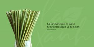 ống hút cỏ bàng - grass straws vietnam